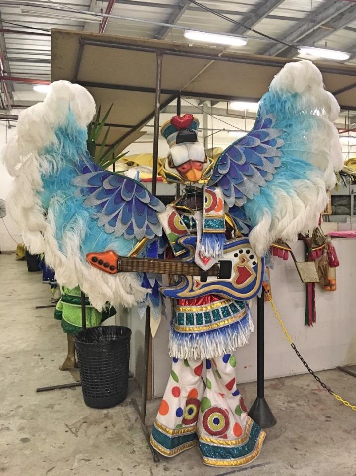 Brazilië_Carnaval Experience kleurrijke vogel